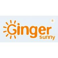 Ginger Sunny