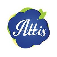 ATTIS